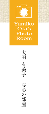 Yumoko Ota's PHOTO ROOM